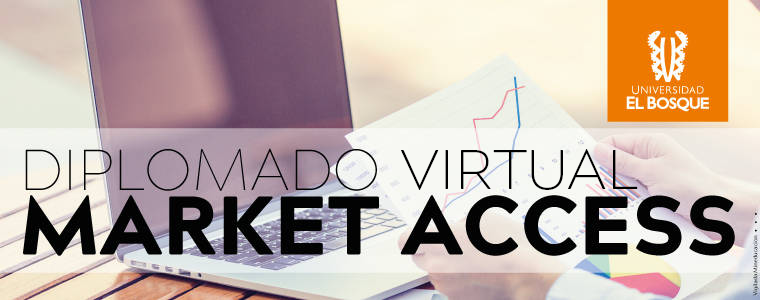 Diplomado Virtual Market Access